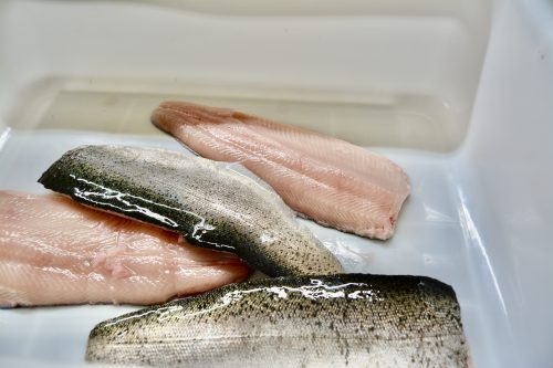 Close up of four filets of fish with skin